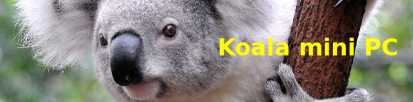 Koala.it – mini PC appliance con Linux